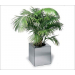 Encontre Cool Vasos Com Plantas Artificiais Para Sala Para 2019